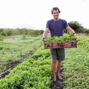 Jack Johnson dan sayuran organik. Foto: Bonappetit