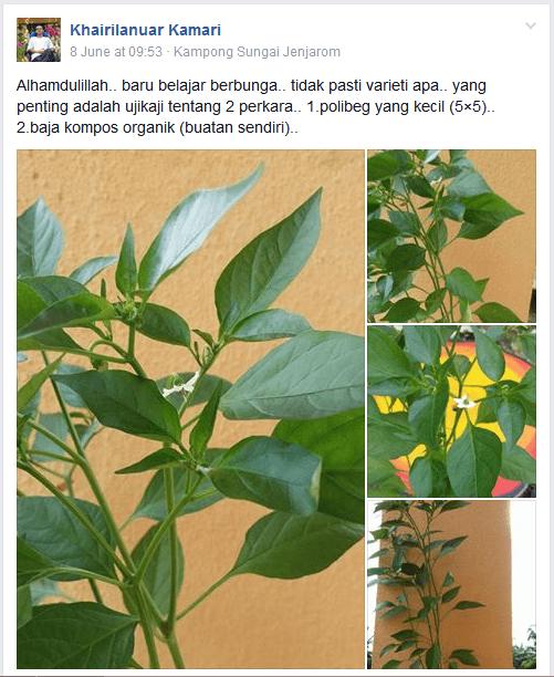 Khairulanuar Kamari