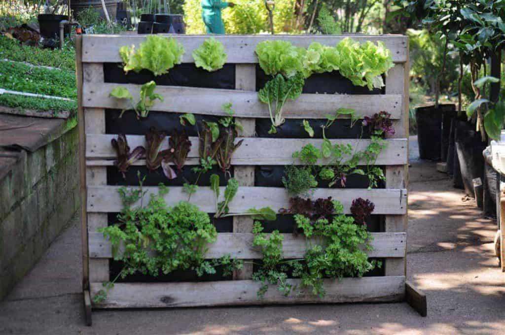 Sumber : Home Garden Air